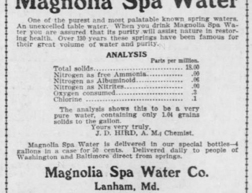 History of Magnolia Springs, Prince George's County, Maryland